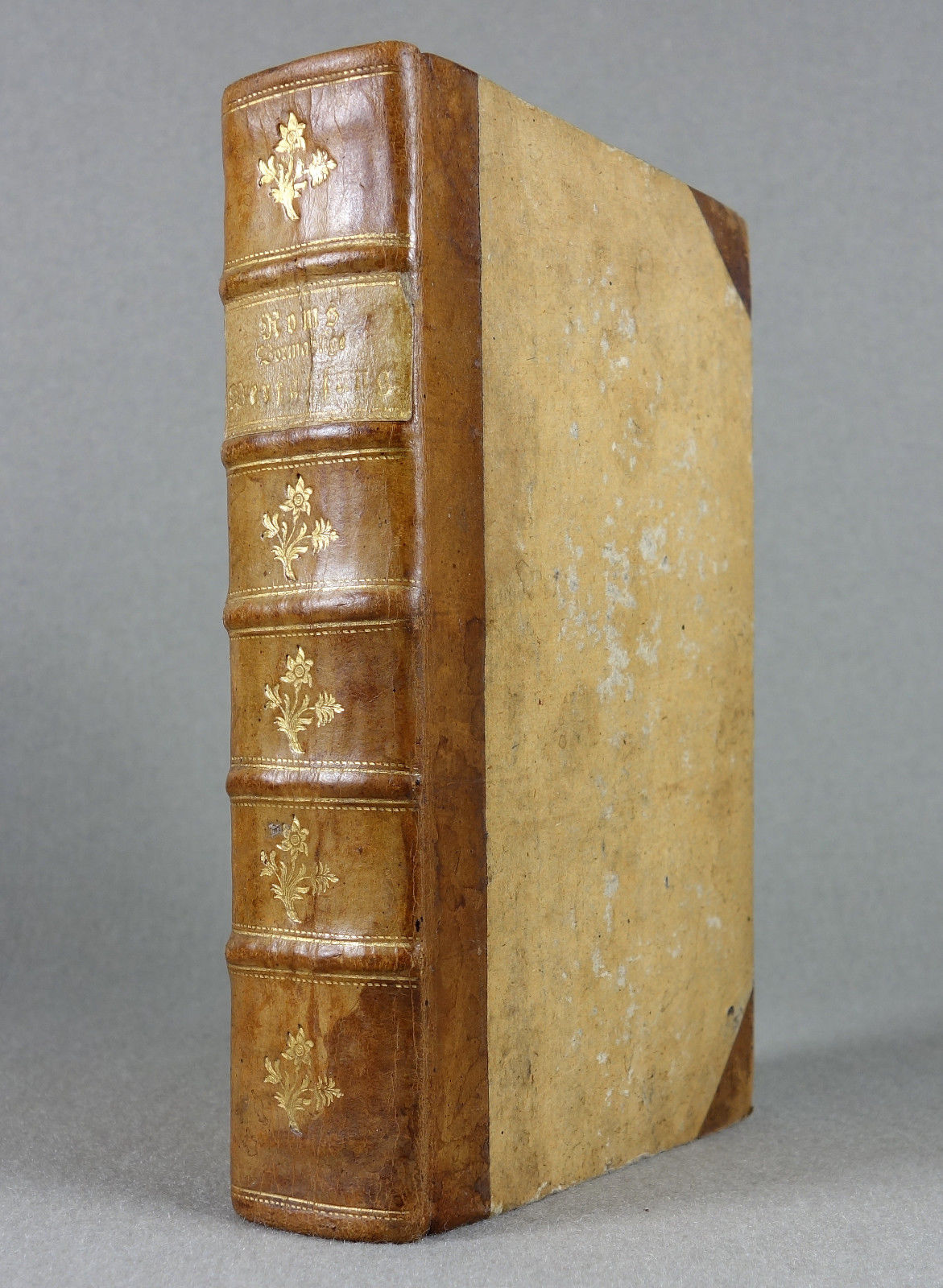 1778 - ANTIKE - Römische Geschichte - LEDER Rom Militaria Geschichte Numismatik