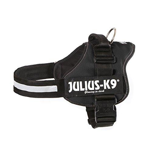 Julius-K9 162P2, K9-Powergeschirr mit Logofeld, Gr.: 2, schwarz