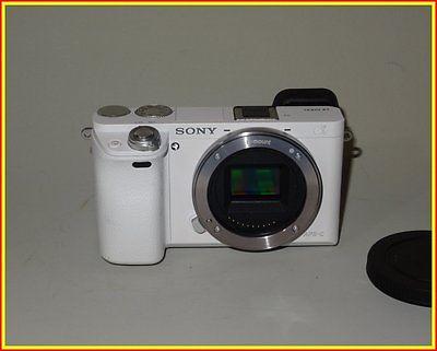 Sony Alpha ILCE-6000 24,3 MP Digitalkamera - Silber (Nur Gehäuse) NEX