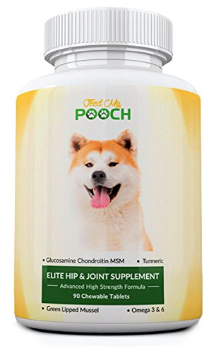 Gelenk Ergänzungsfutter für Hunde - Fortgeschrittene Nahrungsergänzungsmittel zur Förderung der Gesundheit von Hüfte und Gelenken mit Glucosamin, Chondroitin, MSM, Kurkuma, Grünlippmuschel, Vitamin C & E, Omega 3 & 6 - Gelenkhilfe für Hüftdysplasie und Ar