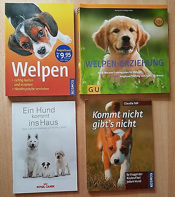 4 HUNDE-Bücher ° Welpen-Erziehung ° Kommt nicht gibt´s nicht ° Ein Hund kommt