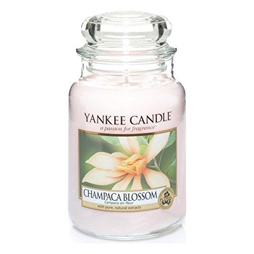 Yankee Candle 1302673E Champaca Blossom Grosses Jar