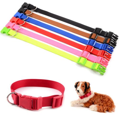 Neu Nylon Hundehalsband Hunde Welpen Halsband Halsung Halsbänder Nylonhalsband