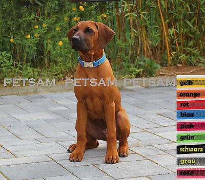 Halsband VERSTELLBAR gummiert Metall-Steckschnalle Hundehalsband 20mm SEHR EDEL