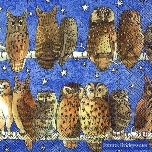 20 Servietten Eule Owls Emma Bridgewater Napkins
