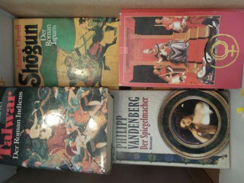 Bücherkiste / Sammlung historische Romane (Die Päpstin etc.) *mit Liste
