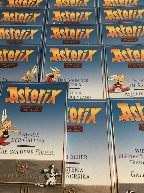 ASTERIX Riesen Sammelband 16 Bände im Paket Weltbild Edition