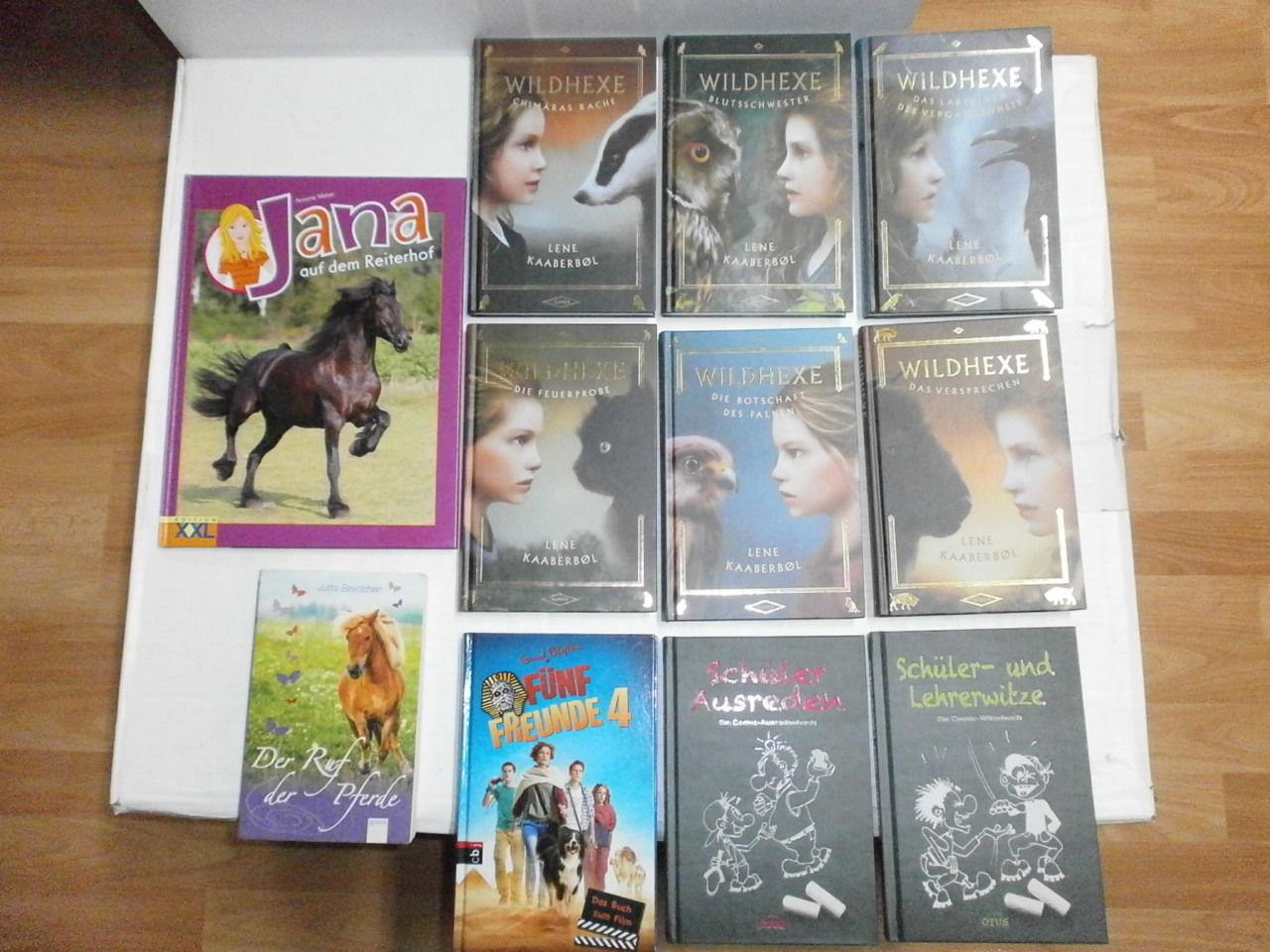 Konvout 11 schöne Kinder Jugendbücher 6 x Wildhexe von Lene Kaaberbol Witze usw.