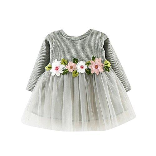 JYJM Nettes Kleinkind Baby Blumen Ballettröckchen langes Hülsen Prinzessin Kleid (Größe: 0-6 Monate, Grau)