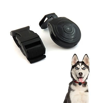 Pet Cam Camera Dog Cat Record Finder Wireless Collar Pets Eye View ID Tag