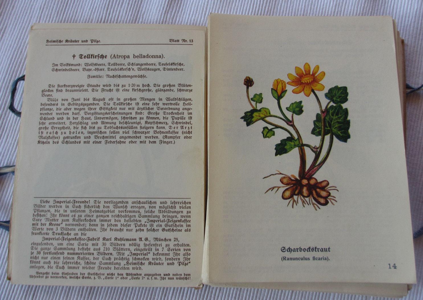 Heimische Kräuter und Pilze Imperial Feigenkaffee 1936