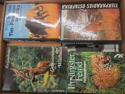 31  Bücher Sachbücher Tierdokumentationen Tierberichte Safari Safariberichte
