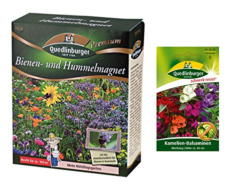 Quedlinburger Bienen- und Hummelmagnet + Kamelien-Balsamine Mischung