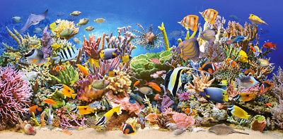Castorland C-400089 Puzzle 4000 Teile Underwater Life