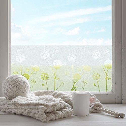 FANCY-FIX selbsthaftende Fensterfolie mit Löwenzahn-Motiv statische Sonnenschutzfolie - UV-Schutz & Sichtschutz - Milchglasfolie zur Dekoration und Schutz der Privatsphäre (43 x 200 cm)
