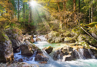 Puzzle Castorland 2000 Teile The forest stream Bach im Wald C-200382