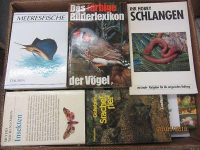 37 Bücher  Tiere Tierbildbände Säugetiere Fische Reptilien Tierpflege