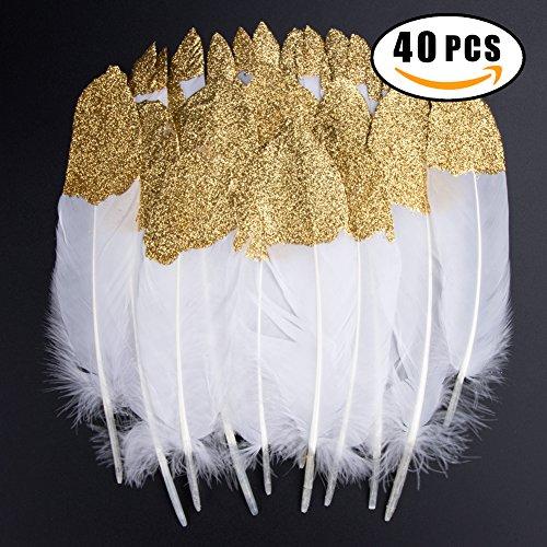 Bunte Federn, 40 Stück Gold getauchtes natürliches Weiß Gänsefedern, ideal als Dekoration zum Karnival für Halloween Fest Masken, Kostüme und Basteln für Kinder, Sicher und Ungiftig und Nicht verblassen (Gold)